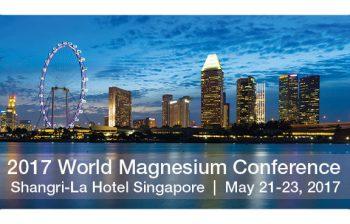International Magnesium Association