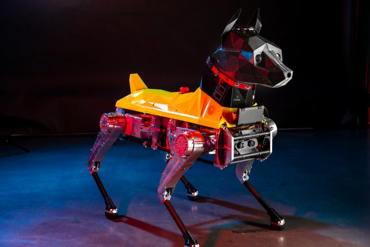 Astro robotic dog